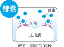 酵素:dextranase